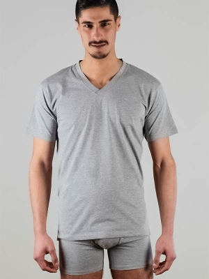 Mens v-neck shirt